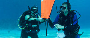Search-and-Recovery-Diver