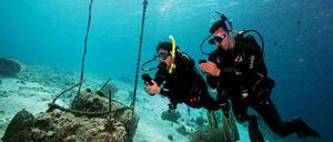 Underwater-Navigator-diver